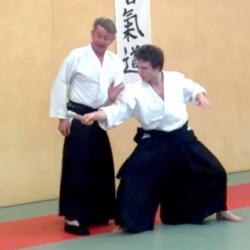 Aikido - tanto dori