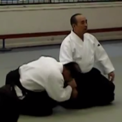 Aikido - Shimamoto Shihan (8th dan)