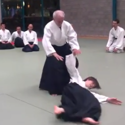 Aikido - Tony Smibert Shihan (7th dan)