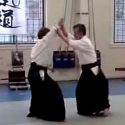 Aikido - Yamada Hironobu Shihan (8th dan)